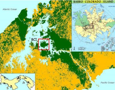 Location of the Barro Colorado Island in Panama